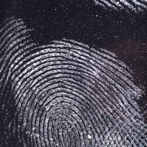 Benjilock fingerprint by Showcake